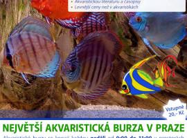 Rybyarybicky.cz advertisement