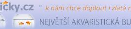 rybyarybicky.cz